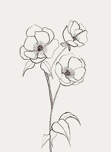 simple drawing flower best 25 simple flower drawing ideas ...