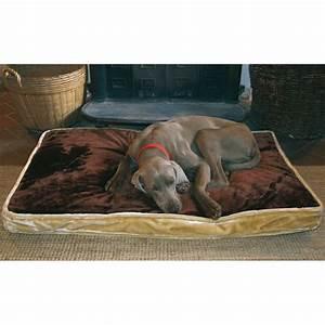 Video Pour Chien : ducatillon coussin pour chien confort chiens ~ Medecine-chirurgie-esthetiques.com Avis de Voitures