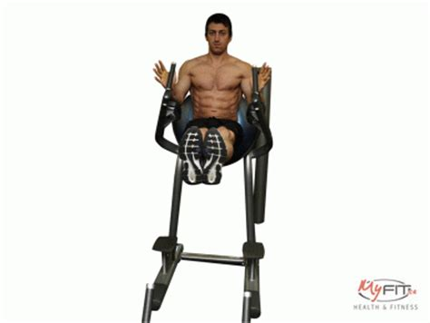 roman chair exercise myfit
