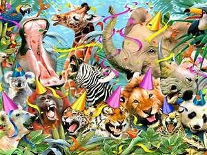 Jungle Animals Eight wallpapers | Jungle Animals Eight ...
