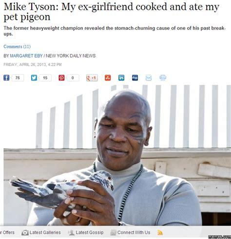 Mike Tyson Memes - mike tyson s pet pigeon memes com