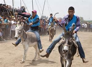 Inside Mexicos Donkey Festival In Otumba Where Mules Are