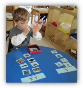 montessori pathways preschool kindergarten 542 | kindergarten science