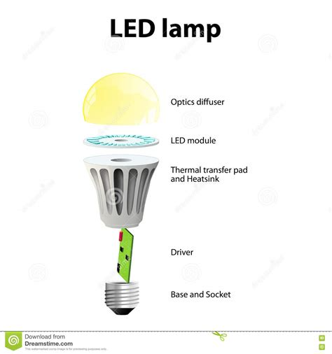 basic components of led light bulbs stock vector image