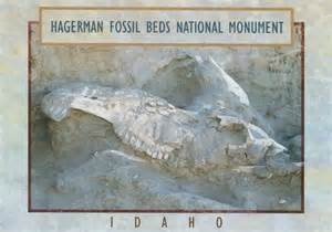 hagerman fossil beds national monument postcard pictures