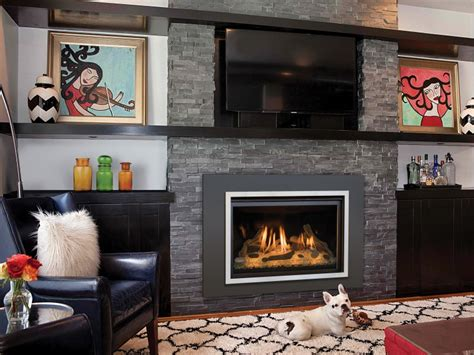 Chaska  Gas  Ee  Fireplace Ee   Insert Gas Fireplaces Inserts