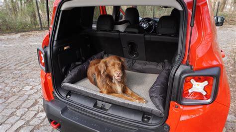 jeep renegade probleme tests preise kosten daten