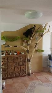More For Cats Kratzbaum : 133 best diy projects for cats images on pinterest pets kittens and cute kittens ~ Whattoseeinmadrid.com Haus und Dekorationen