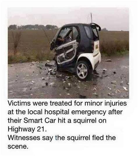 Vs Smart Car by Smart Car Vs Squirrel
