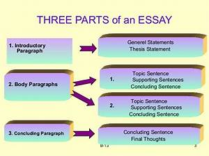 will writing service solicitors sample process essay on cooking sample process essay on cooking
