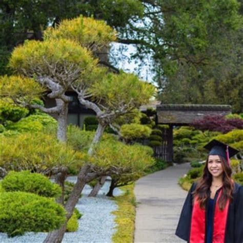 hayward japanese gardens 463 photos park forests