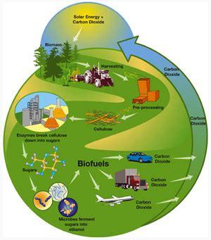 Новости биотоплива
