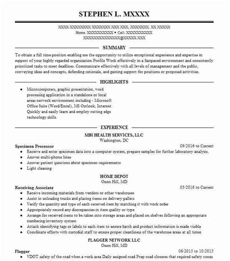 Specimen Of Resume by Specimen Processor Resume Sle Processor Resumes
