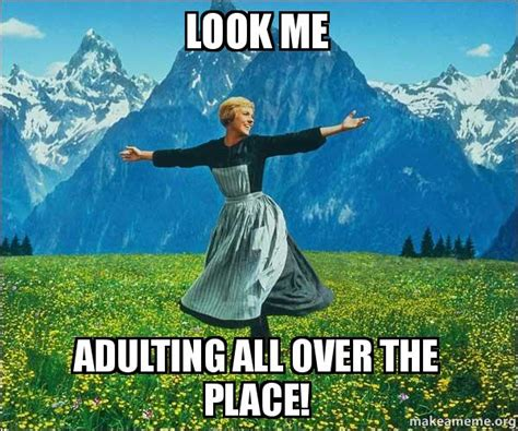 Adulting Memes - look me adulting all over the place sound of music make a meme