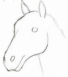 Selbst Verputzen Leicht Gemacht : hier erkennen sie selber wie kann man ein pferd ~ Lizthompson.info Haus und Dekorationen