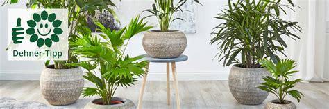 Ihr Online Shop Für Garten, Pflanzen, Balkon & Tiere