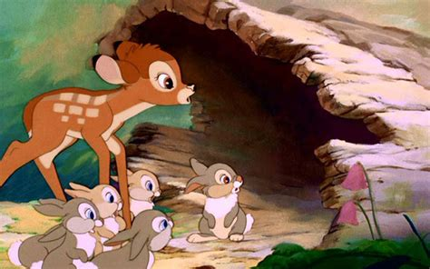 bambi  chosen hd wallpapers  hd wallpapers