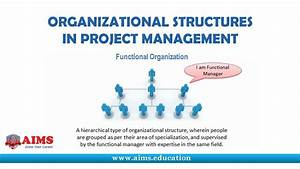 What Is Project Management Organizational Structure  Its