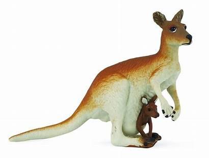 Kangaroo Safari Ltd Guenstig Spielzeug