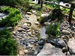 Water Garden Gardens Water Gardens Garden Inspiration Roof Gardens Gardens