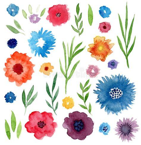 grupo floral da aquarela flores e folhas isoladas convites casamento decora 231 227 o do