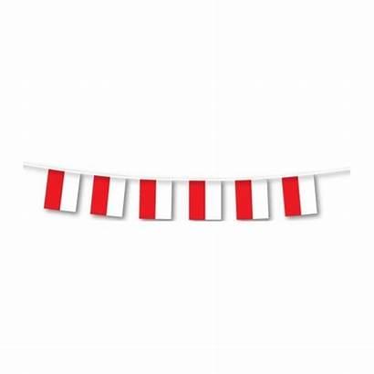 Bunting Flag Plas 7m Lge Poland Amscan
