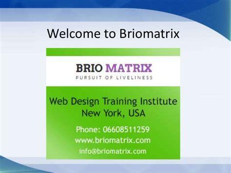 web design new york web design in new york briomatrix