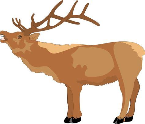 animated reindeer clipart 101 clip art