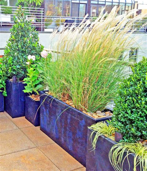 nyc roof garden paver deck terrace container plants grasses potted plants contemporary