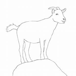 How To Draw A Goat | How to draw, Animals and To draw