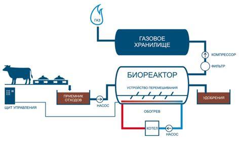 Биотопливо своими руками биодизель как альтернатива современному топливу