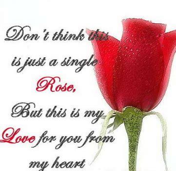 kata mutiara tentang bunga mawar  bahasa inggris
