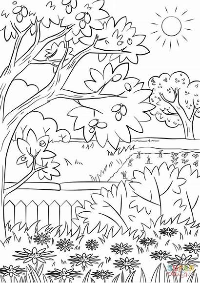 Coloring Garden Pages Summer Nature Printable