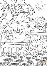 Coloring Printable Nature Sheets sketch template