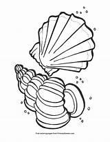 Seashells Coloring Pages Seashell Summer Mahjong Printable Pdf Primarygames Cartoon sketch template