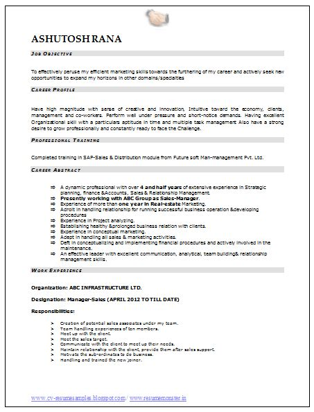Professional Resume Sles In Word Format by Professional Curriculum Vitae Resume Template Sle