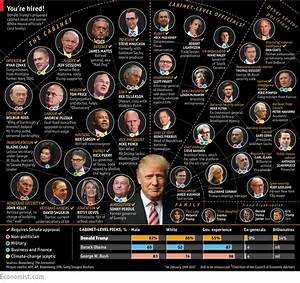 What Donald Trump's Appointments Reveal About His Incoming ...