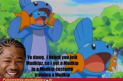 1000 images about so i heard you like mudkip on