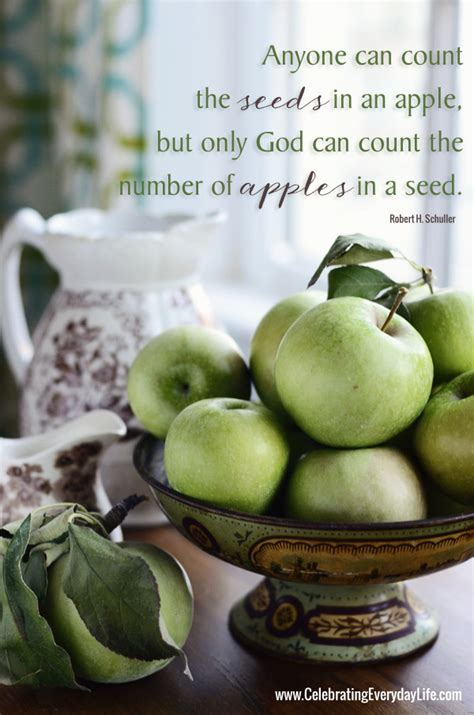 Apple Quote Inspiring Quote Only God Can Count The Number Of Apples