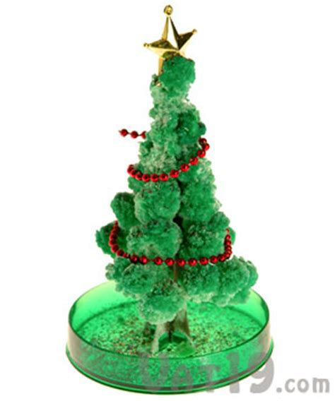 magical growing christmas tree watch it grow in six hours