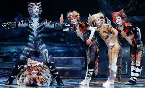 spettacolo cats musical wwwdanzadancecom
