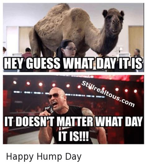 Hump Day Meme Hey Guess What Day It Is It Doesnt Matter Hump Day Work