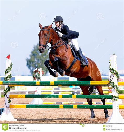 sport horse equestrian jumping competitions obstacle deporte competencias ecuestre horsewoman overcoming sportswoman released caballo