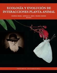 Animal En G : pdf mutualismos planta animal en islas influencia en la ~ Melissatoandfro.com Idées de Décoration