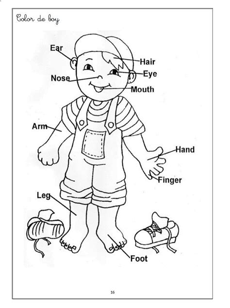 witch worksheets for preschool human body coloring pages for kids worksheets for kids
