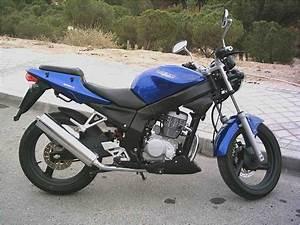 125 Daelim Roadwin : daelim roadwin 125cc motorcycle motorcycles catalog with specifications pictures ratings ~ Gottalentnigeria.com Avis de Voitures
