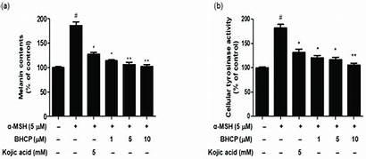Melanin Contents Inhibition Tyrosinase Activity Cellular Bhcp