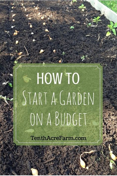 how to start a garden how to start a garden on a budget tenth acre farm