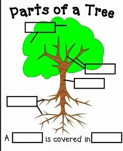 Kinderpond  Tree