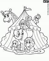 Coloring Circus Animal Clown Preschool Colouring Carnival Train Printable Sheets Theme Carousel Clowns Crafts Template Animals Bord Kiezen Printables Games sketch template